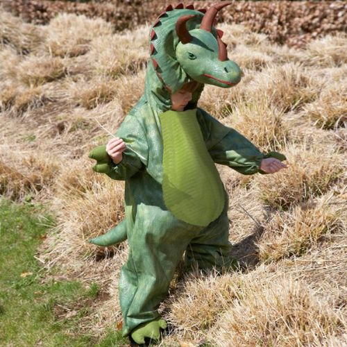 Boys Children's Green Triceratops Dinosaur Deluxe Fancy Dress Up Costume